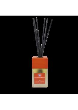 Ароматизатор воздуха с бамбуковыми палочками «Мандарин и Корица»